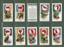 Collctable  Cigarette cards Boy Scout & Girl Guide 1933 set